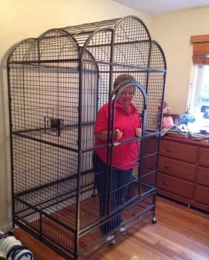 Spawn de abuelas - meme