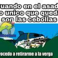 este tiburoncin ujaja