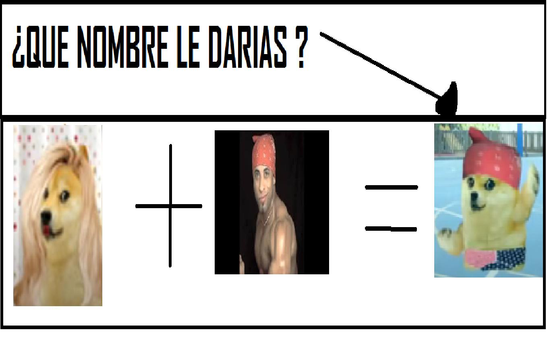 QUE NOMBRE LE DARIAS ? - meme