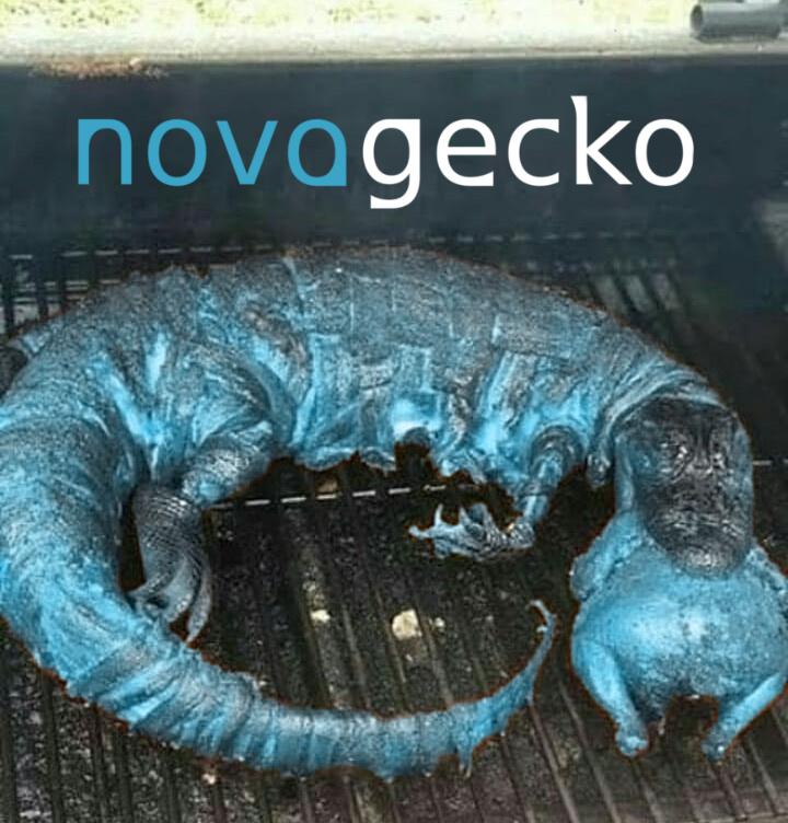 novagecko - meme
