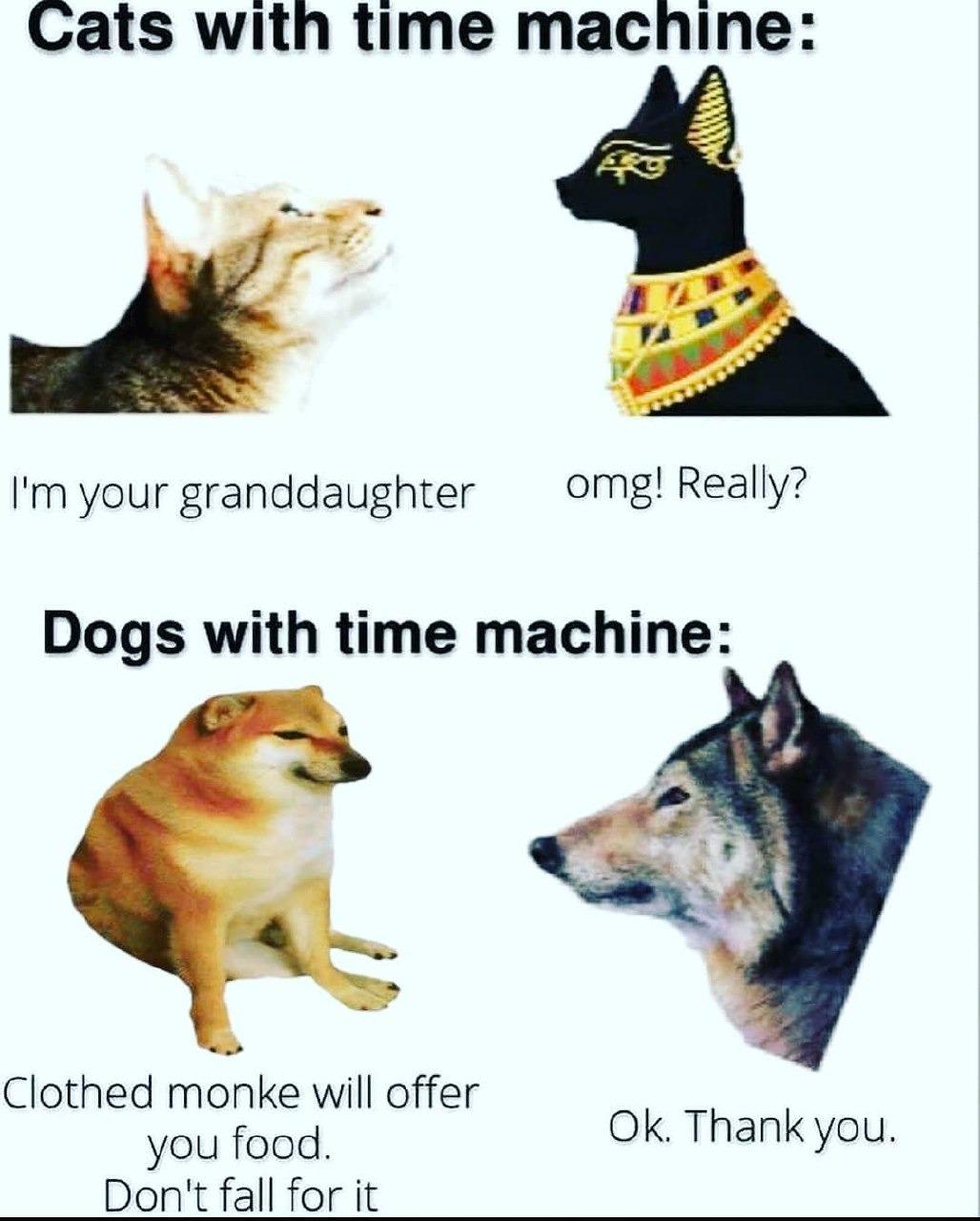 Based dog - meme