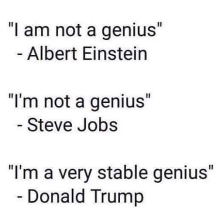Is Trump a genius? - meme