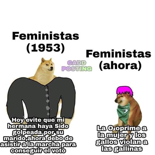 Feminismo con cheems - meme