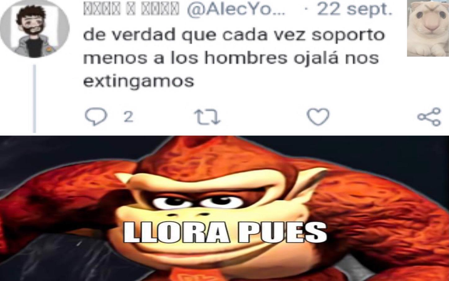 guess i'll say llora pues - meme