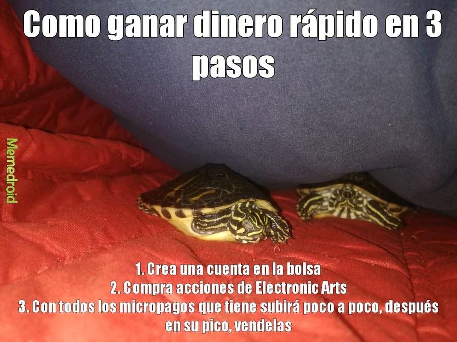 Tortuga dormida - meme