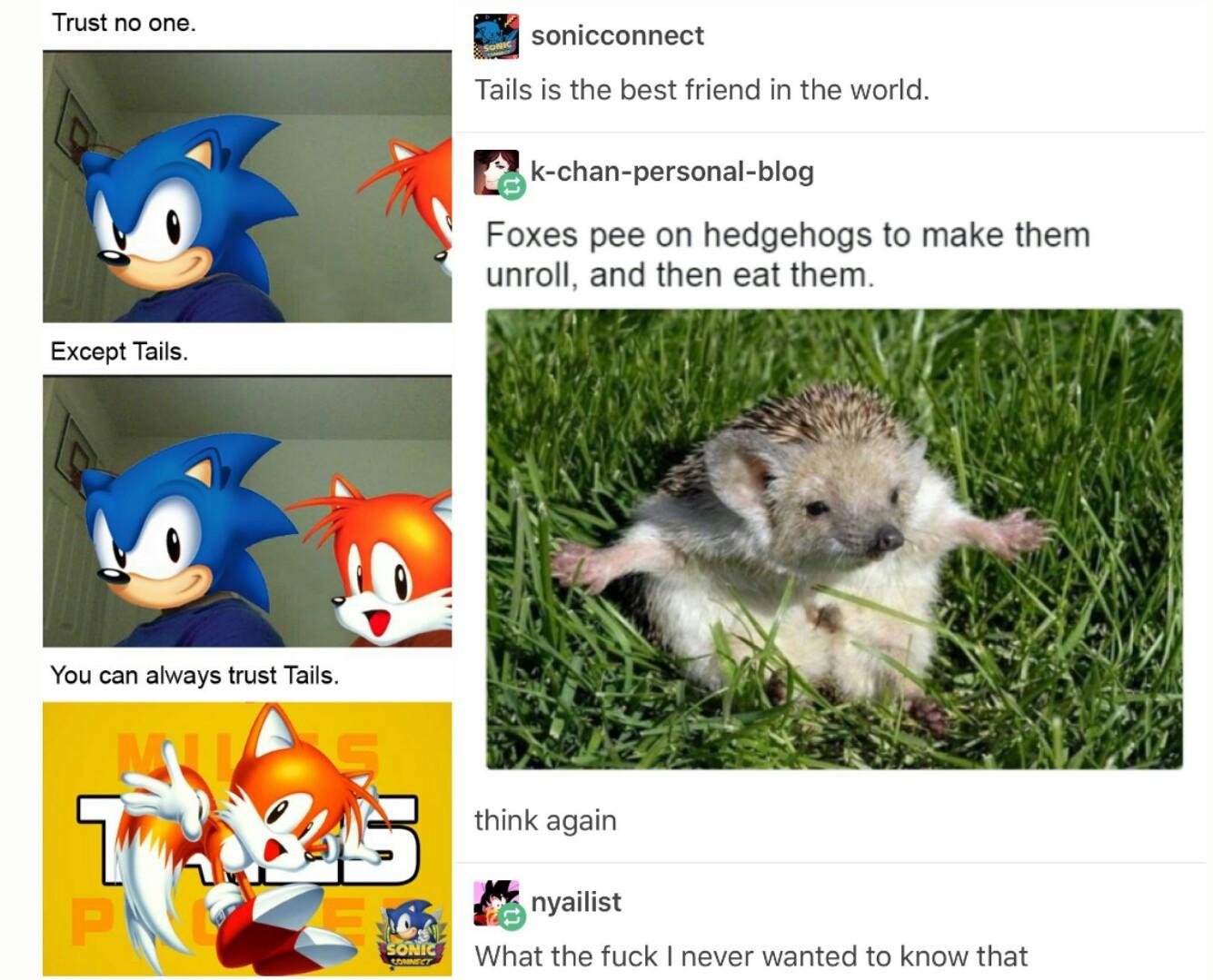 Pray for Sonic - meme