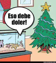 Feliz Navidad les desea mi persona xd - meme