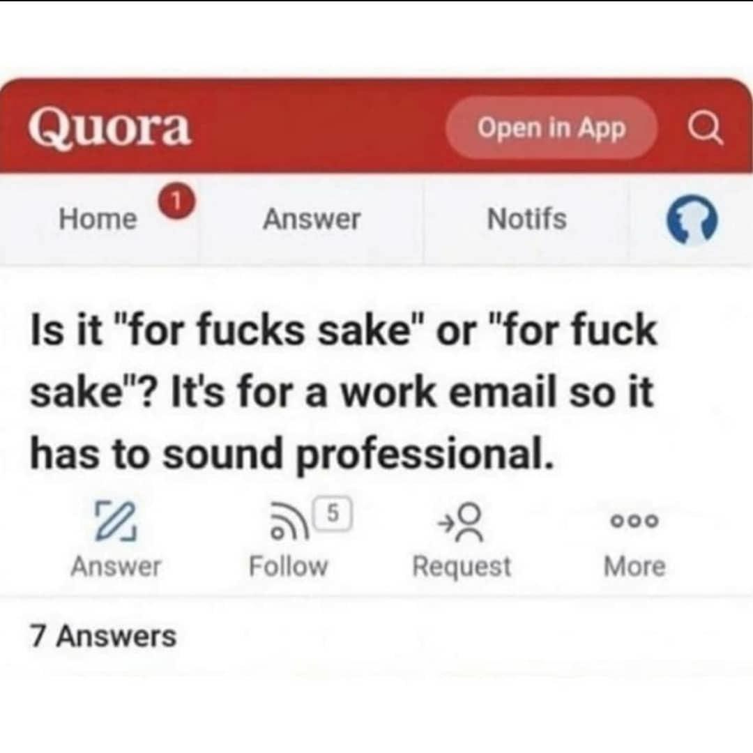 Le professional - meme