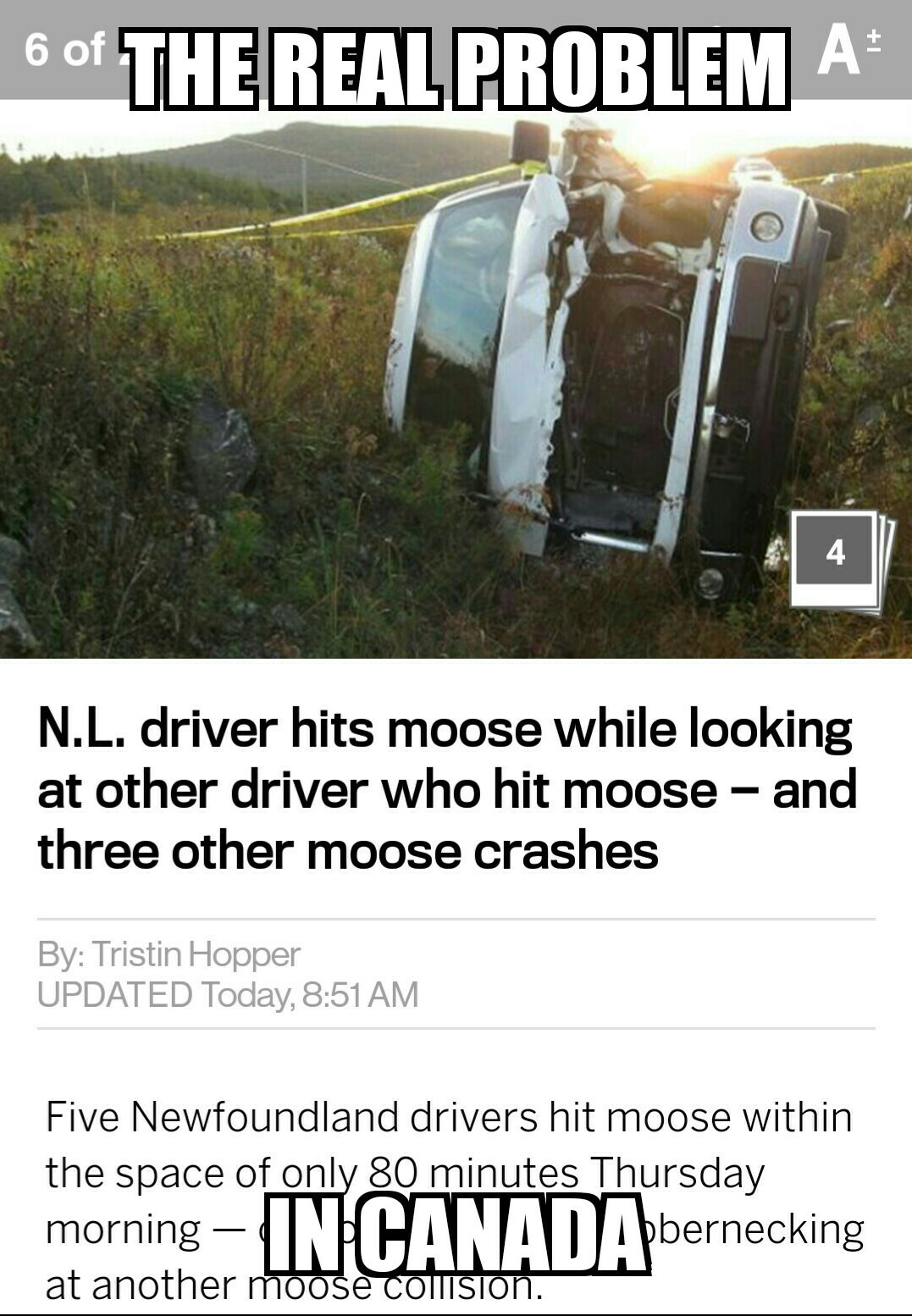 """that guy hit a moose! What a moron."" ...  *hits moose* - meme"