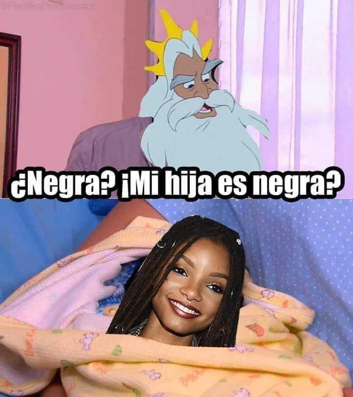 Ariel nigga - meme