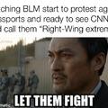 Blm right wing terrorists
