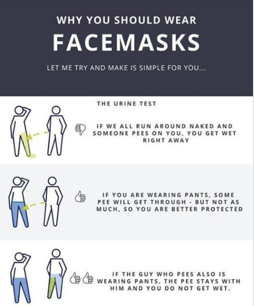 Why you should wear facemasks - meme