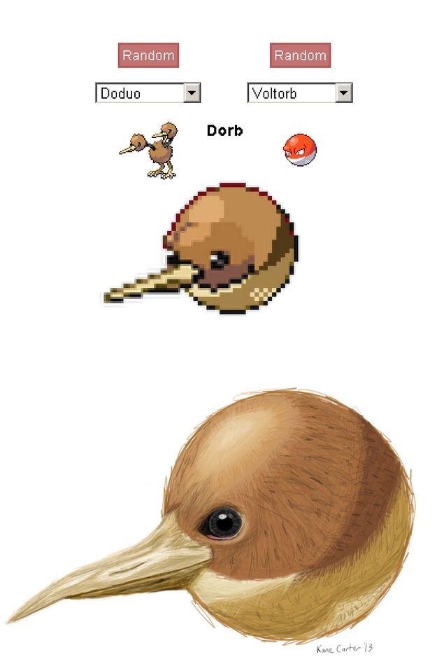 Dorb - meme