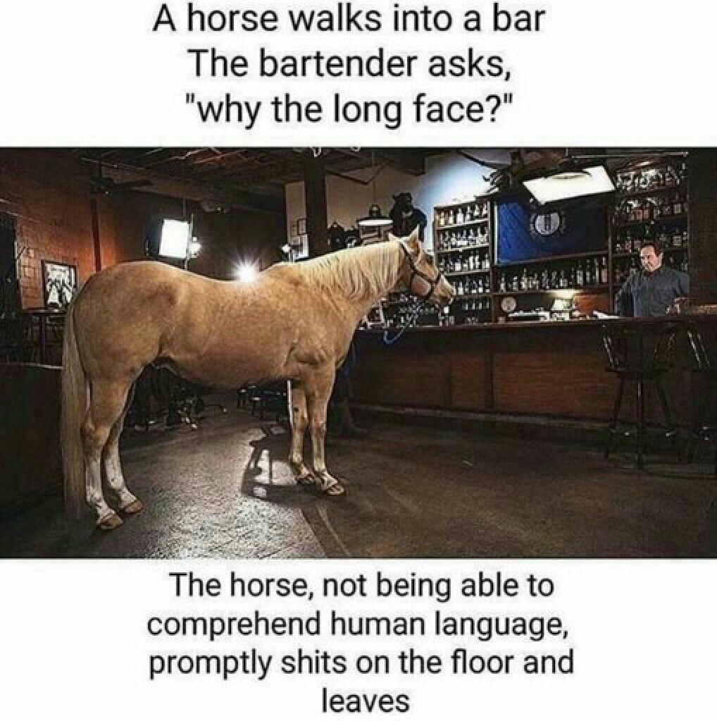 inb4 horsecock.owner/lover - meme