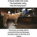 inb4 horsecock.owner/lover