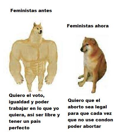 el feminismo no sirve y el que diga lo contrario que vaya a protestar - meme