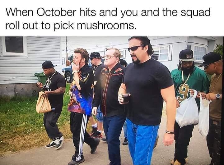 Shroom time - meme