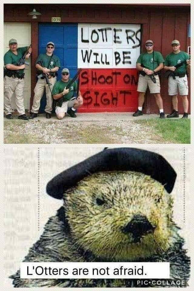 Viva L'Otter! - meme