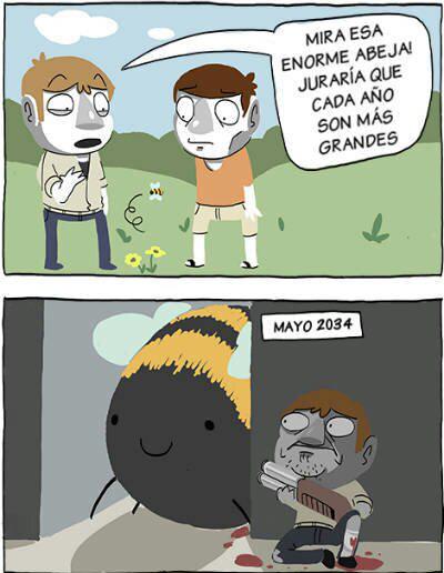 Abejas - meme