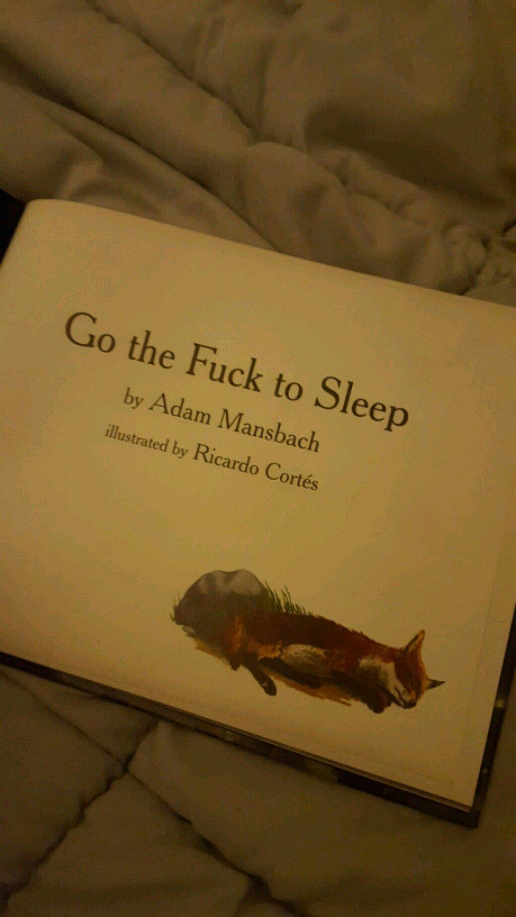 A beautiful bedtime story... - meme