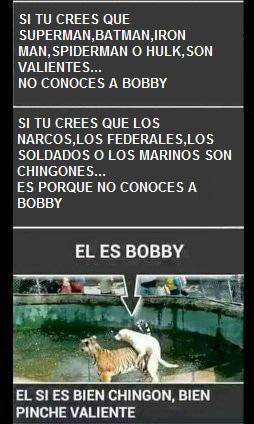 Bobby - meme