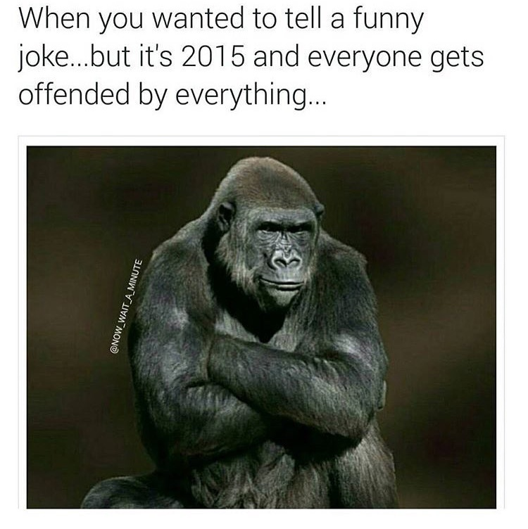 2015 - the year everyone got offended - meme