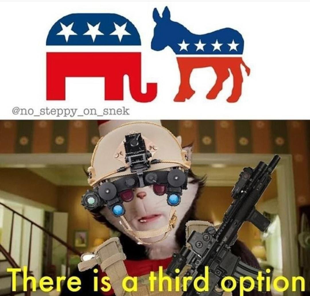TheThirdAlternative - meme