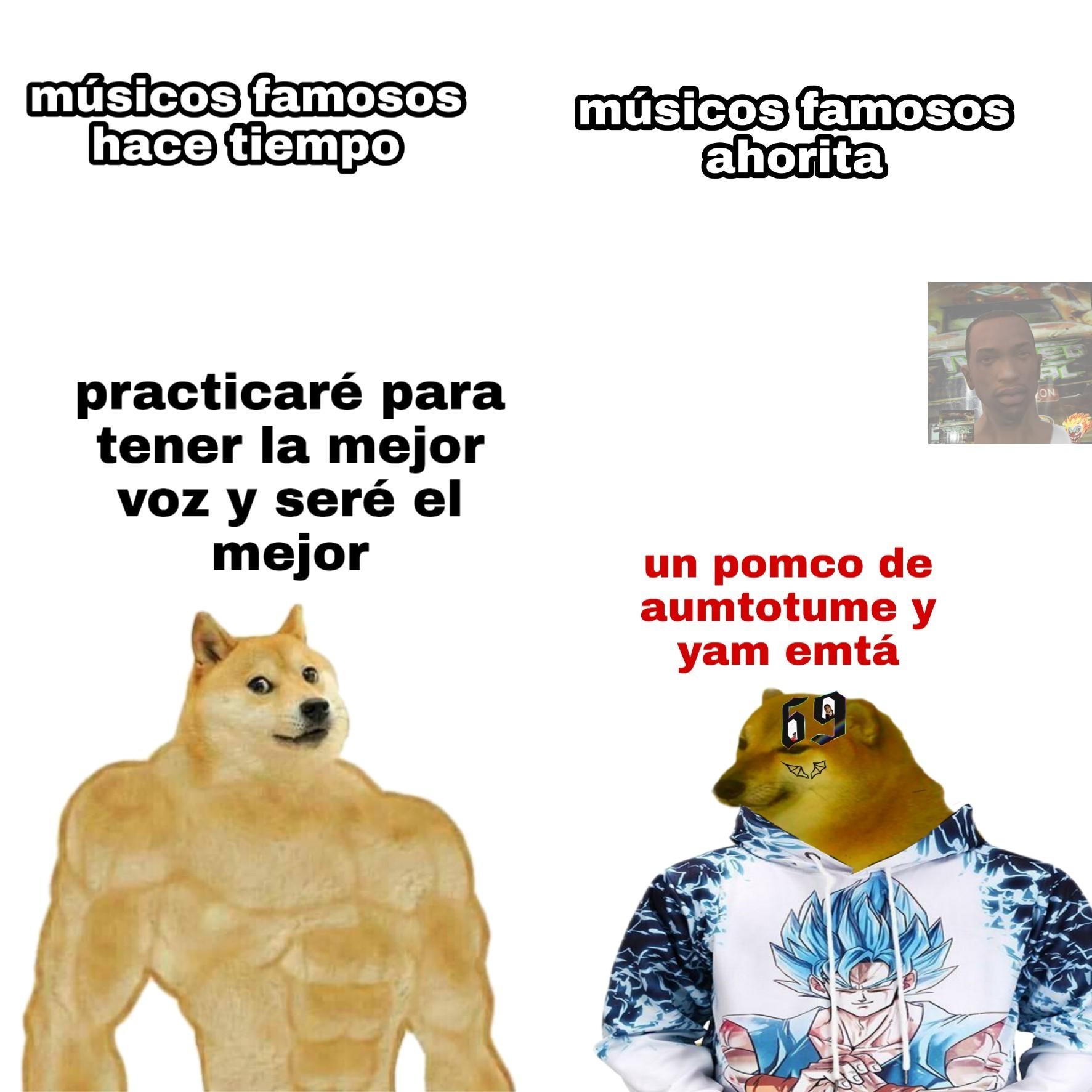 TE TRAJE FLORES - meme