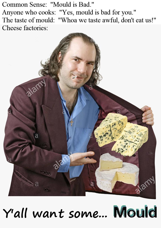 This is a Brie-N-G file - meme