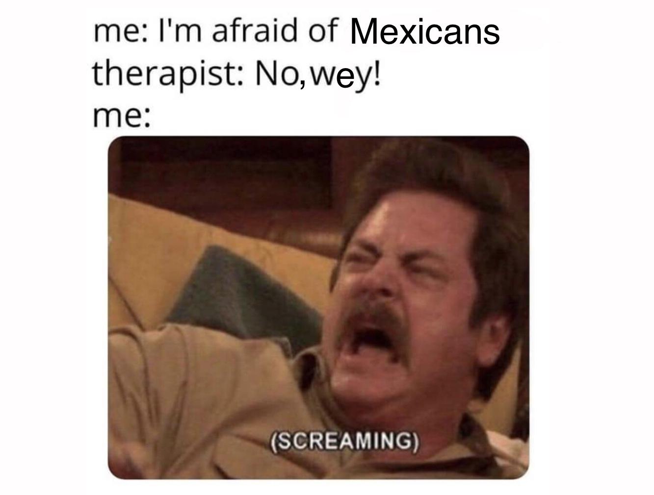 Afraid of Mexicans - meme
