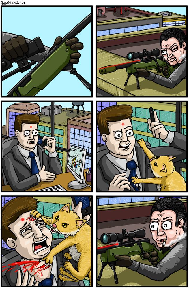 Les chats vont dominer le monde !!! Meow - meme