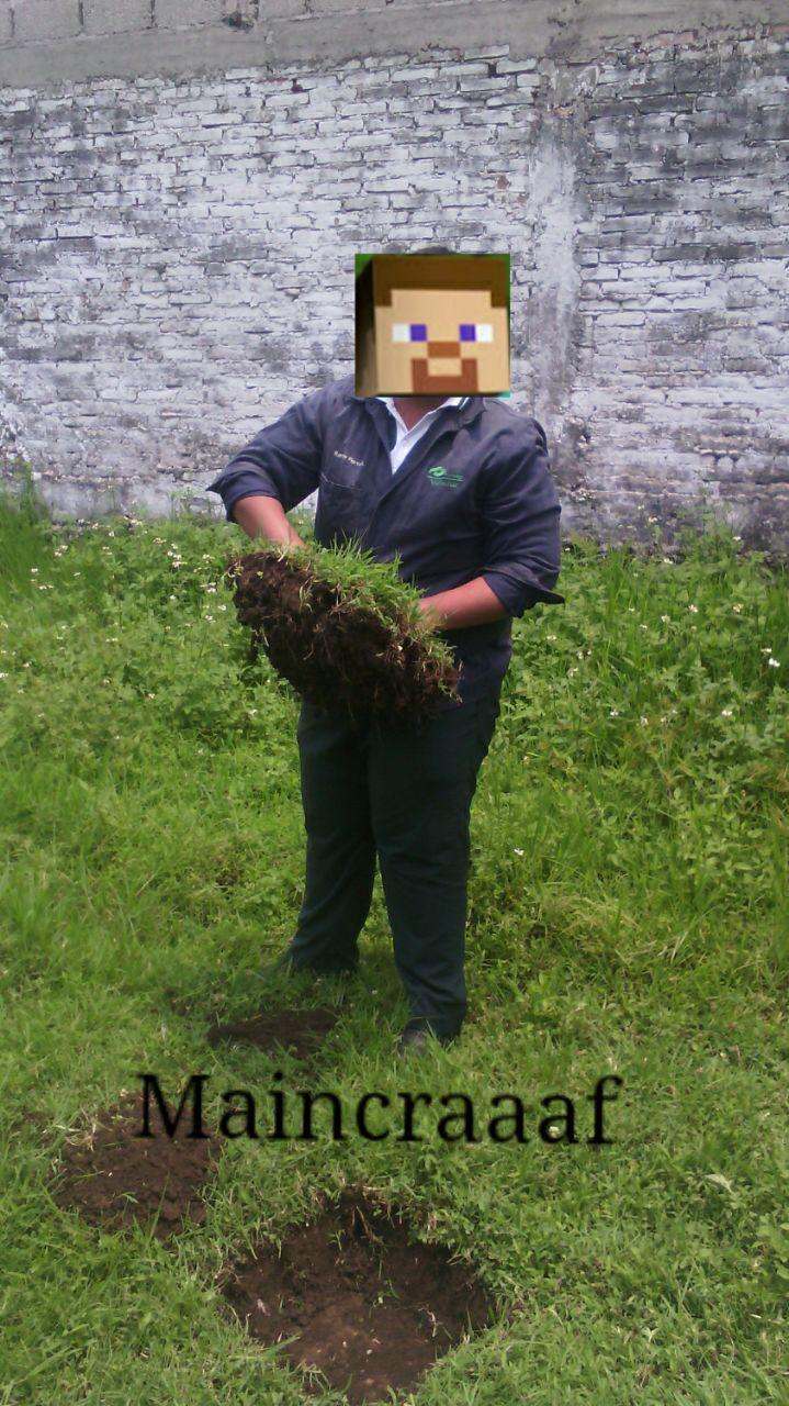 Maincraft - meme
