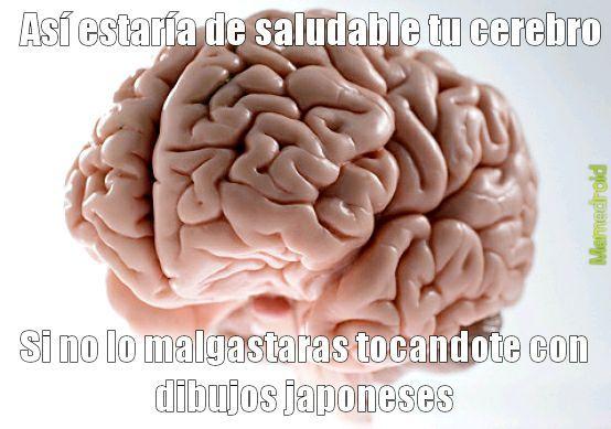 No que no >:^ - meme