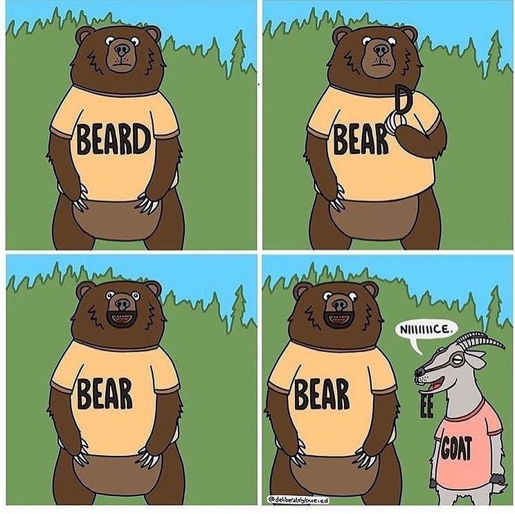 bears and goatee - meme