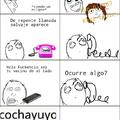 Cochayuyo