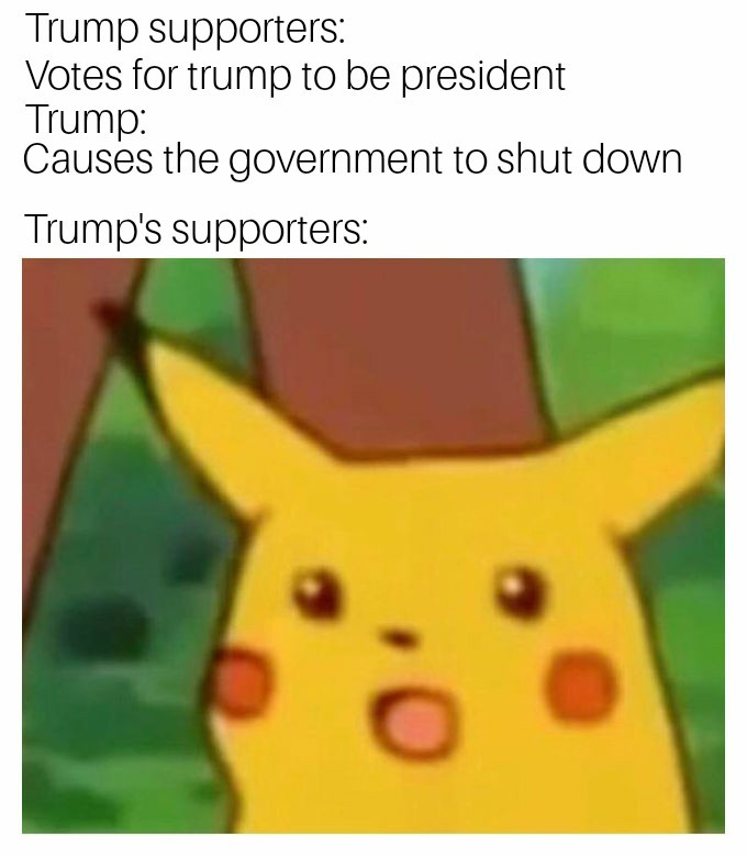 Why did we vote for him again? - meme