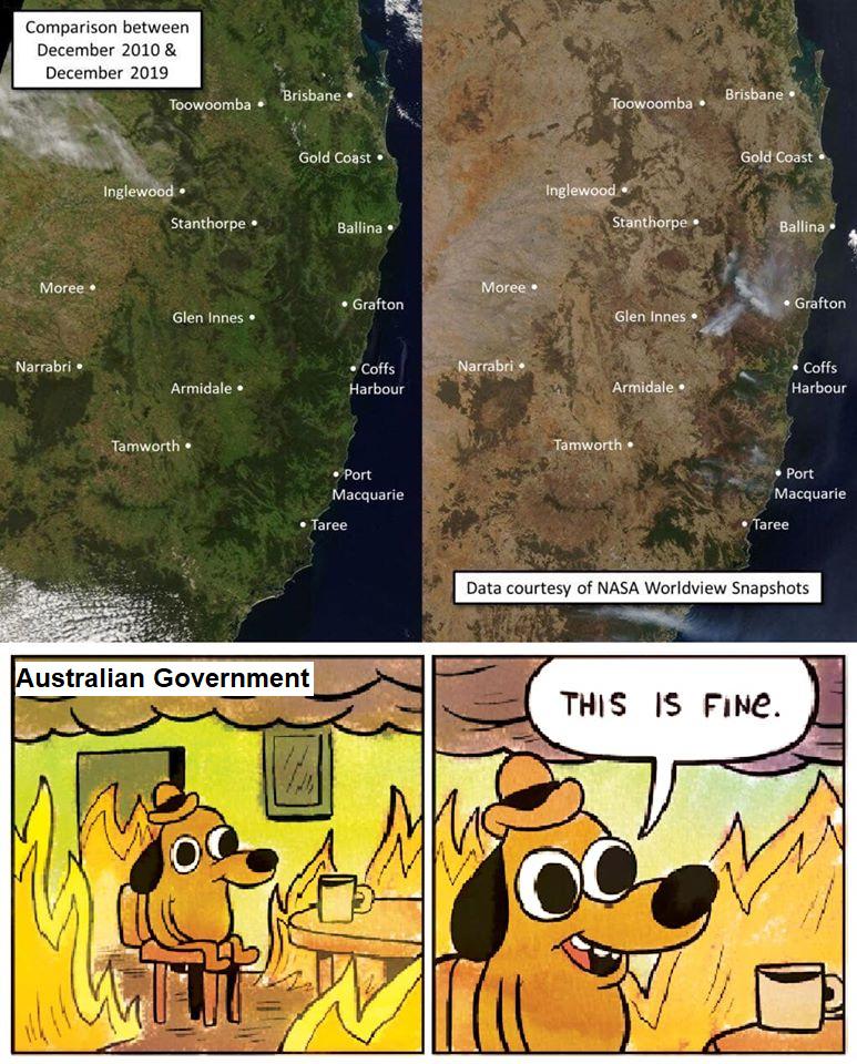 Australia isn't doing so great right now - meme