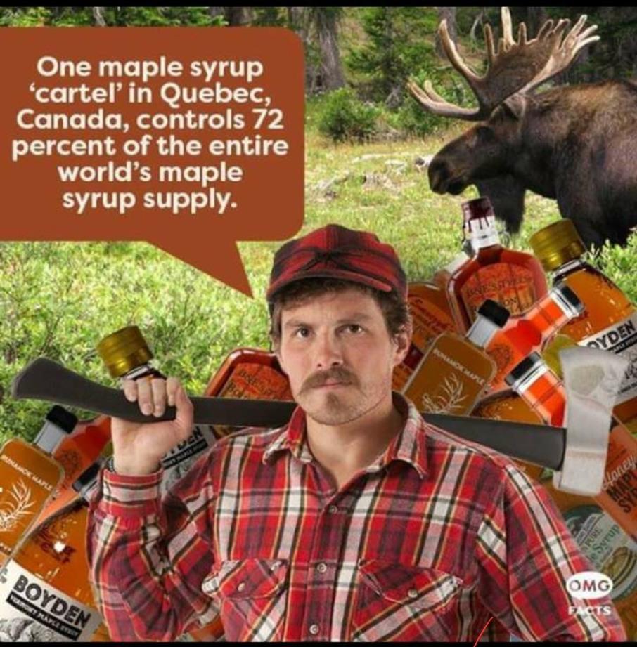 Lumberjack gang - meme