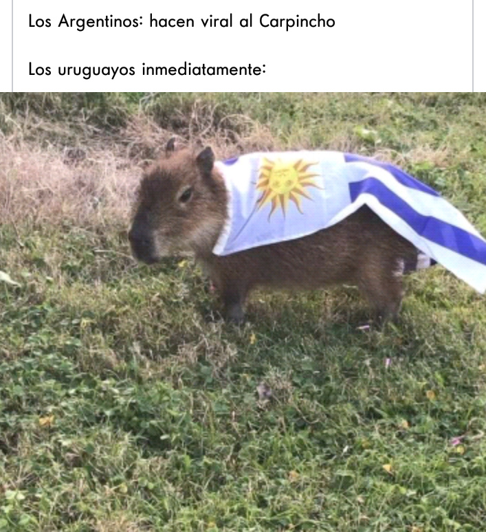 Carpincho - meme