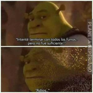Shrek Nooooooo - meme