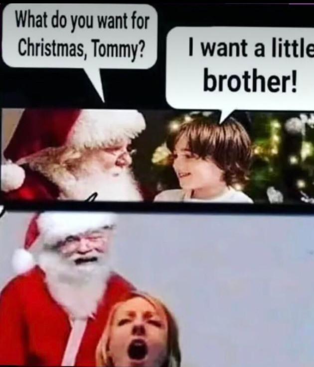 I guess you can say shes a ho ho ho - meme