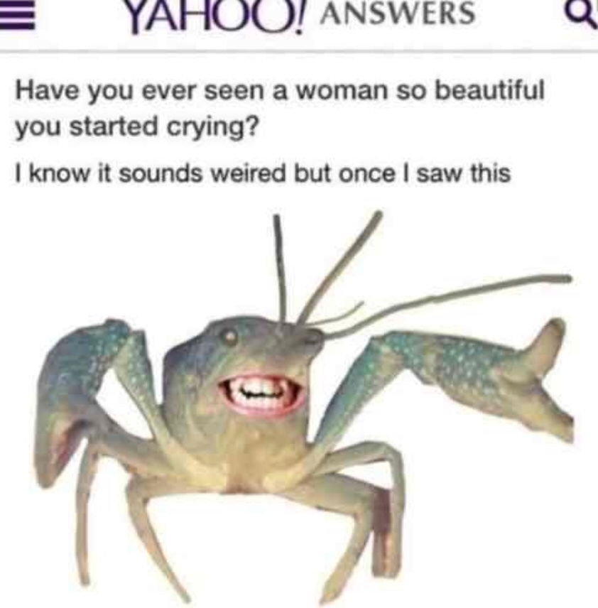 crabbo gonna lick you - meme