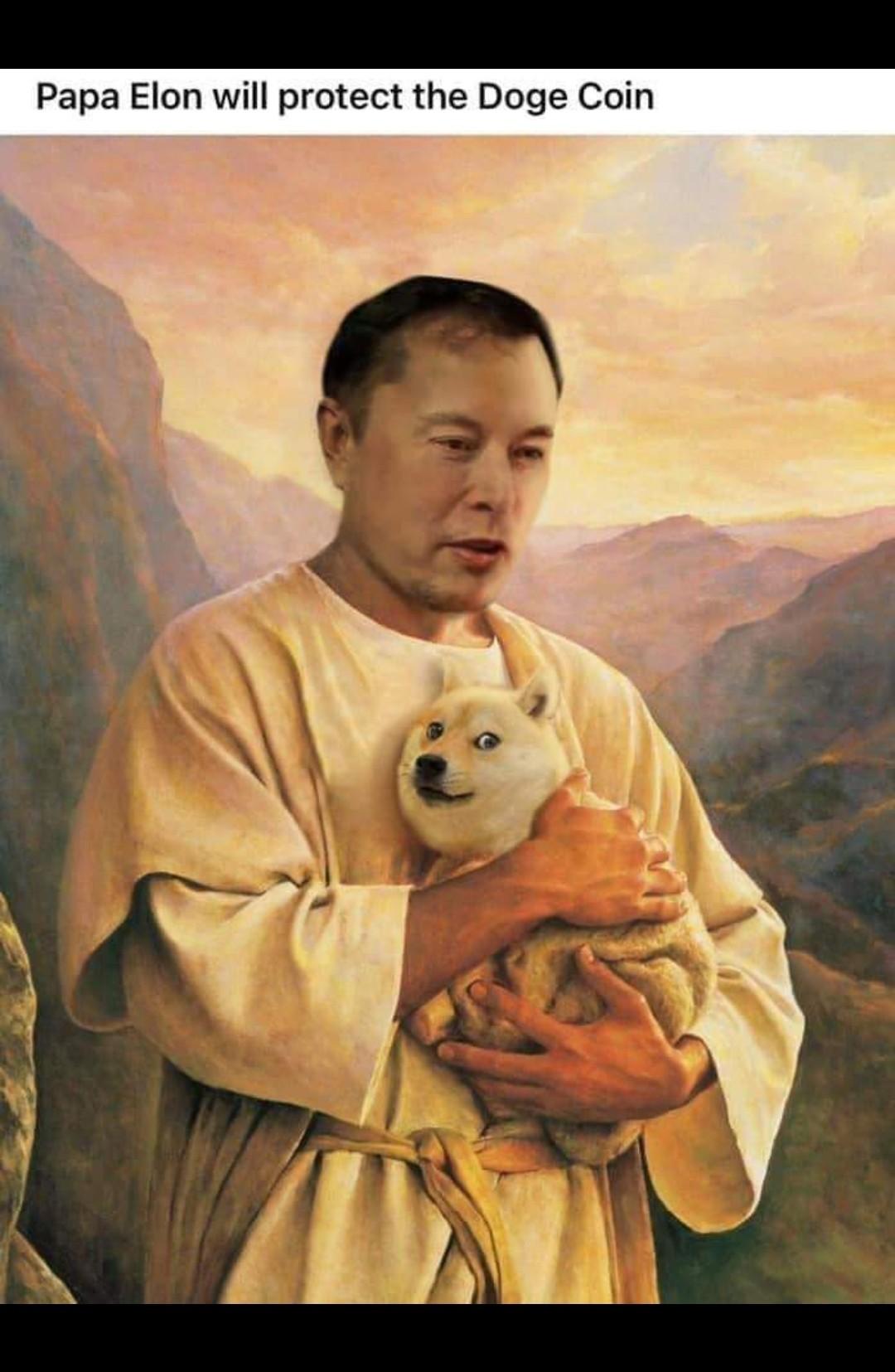 Dogecoin - meme