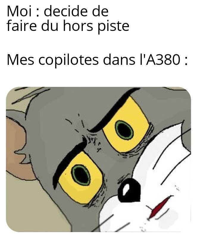 Atterissage :/ - meme