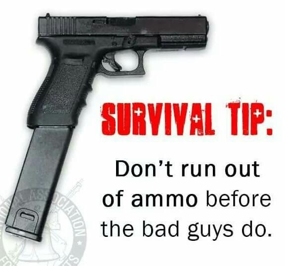 Survival - meme