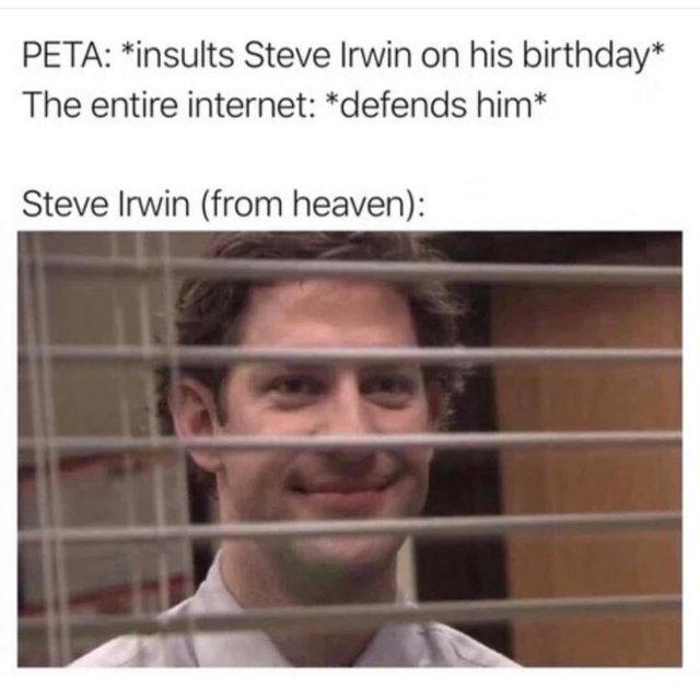 The Best Steve Irwin Memes Memedroid