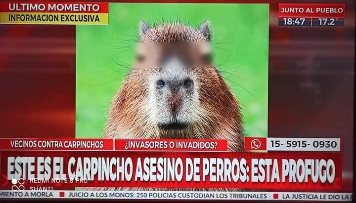 Cómo son las noticias en tu país, pues... - meme