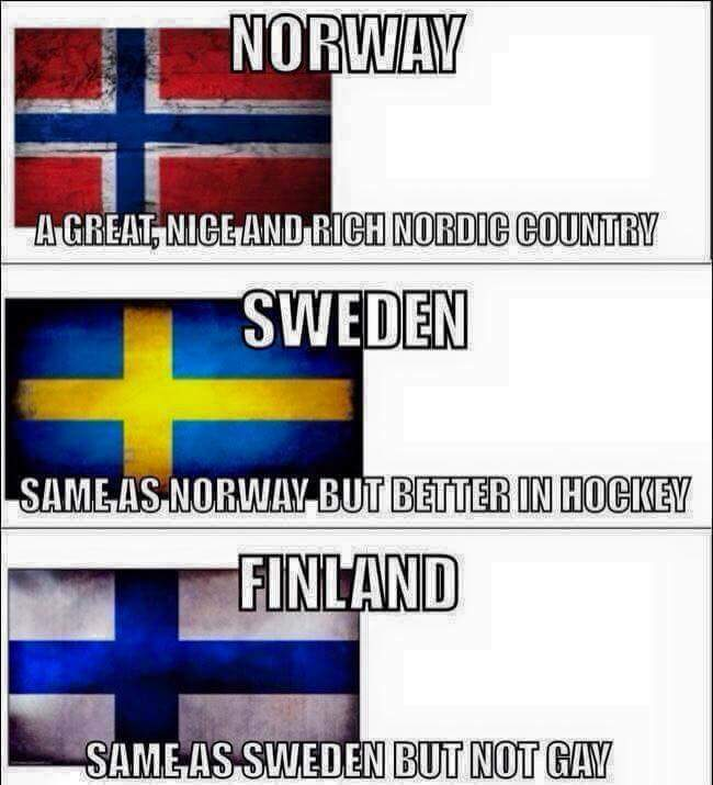 Everything you need to know about nordics - meme