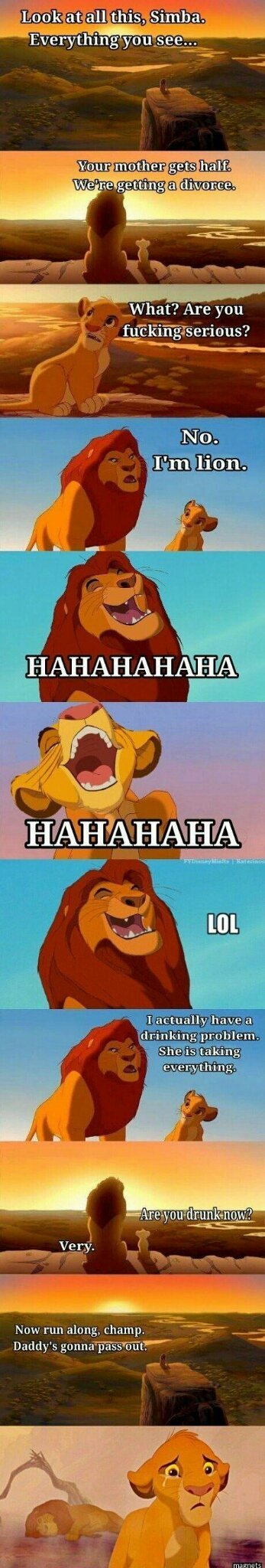 Simbaaaaaa, why?!? - meme