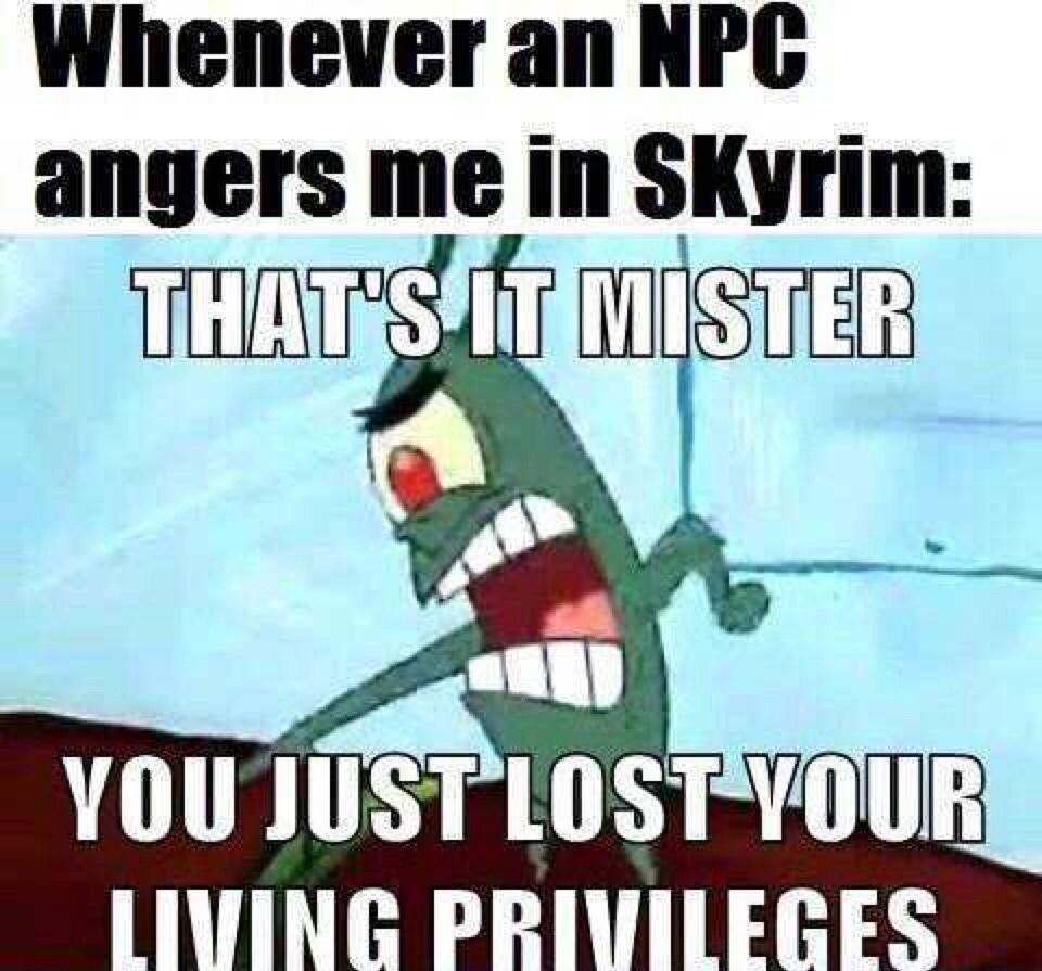 an oldie but still good - meme